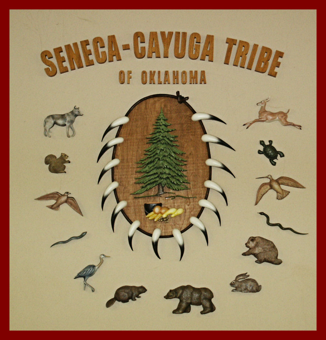 seneca indian tribe essay Culture with a proud and rich history, the seneca were the largest of six native  american nations which comprised the iroquois confederacy or six nations,.